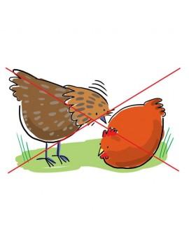 Peckstone Gagalama Taşı 4 kg (Hayvanların birbirini gagalamasını engeller)