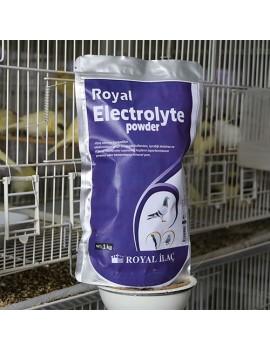 Electrolyte Powder 1Kg.