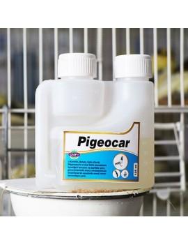 Pigeocar 100ml