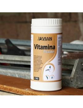Vitamina Powder 1 Kg.