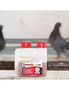 Pantonic 125 ml