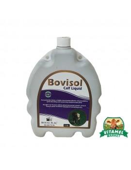 Bovisol Calf Liquid 1 Lt